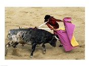 High angle view of a matador fighting with a bull, Spain