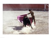 Matador fighting with a bull, Spain