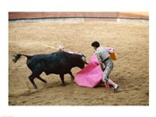Matador fighting a bull, Plaza de Toros, Ronda, Spain