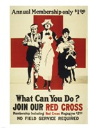 Join Our Red Cross Annual Membership