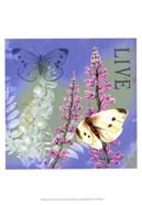 Butterflies Inspire I