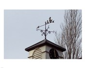 Weathervane on Damerham Village Hall