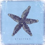 Starfish - Blue