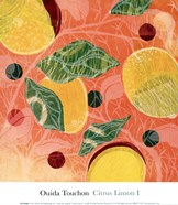 Citrus Limon I (SM.)