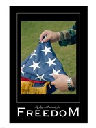 Freedom Affirmation Poster, USAF