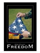 Freedom Affirmation Poster, USAF