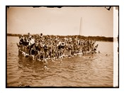 Hawaiian Swimmers at Potomac Tidal Basin