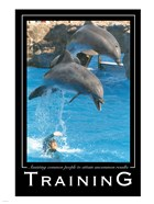 Training Affirmation Poster, USAF