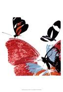 Butterflies Dance IX