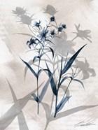 Indigo Bloom IV