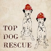 Top Dog Rescue