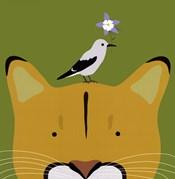 Peek-a-Boo Puma