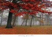 Autumn Mist I