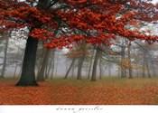 Autumn Mist I