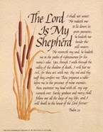Lord Is My Shepard