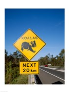 Koala sign on the road, Queensland, Australia
