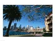 Buildings on the waterfront, Sydney, New South Wales, Australia
