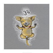 Enlightened Chihuahua