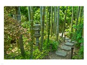 Hasedera-Bamboo Grove