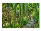 Hasedera-Bamboo Grove