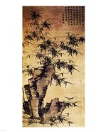 Xia Chang-Bamboo and Stone