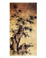 Xia Chang-Bamboo and Stone