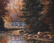 Foot Bridge in the Woods