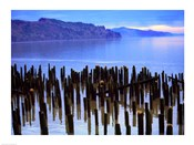 Wooden posts in water, Columbia River, Washington, USA