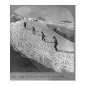 Washington - Mount Rainier Toiling up a steep snowfield