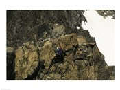 High angle view of a person mountain climbing, Ansel Adams Wilderness, California, USA