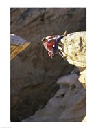 High Angle View of a Man hanging off of a Summit