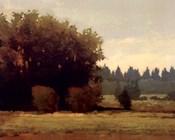 Evening Near Eugene