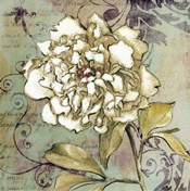 Sweet Fragrance II