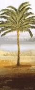 Beach Palm II