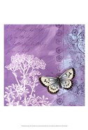 Butterfly Notes VIII