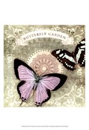 Butterfly Notes XII