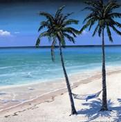 Palm island I