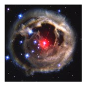 Light Echo Around V838 Monocerotis