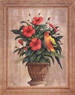 Hibiscus with Parrot