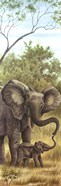 Mama Elephant with Baby