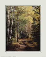 Pat Durgin - Woodland Path Size 16x20