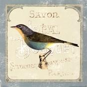 Parisian Bird II