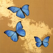 Cerulean Butterfly II