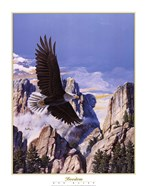 (Freedom) Eagle in Flight