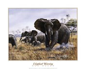 Elephant Warning