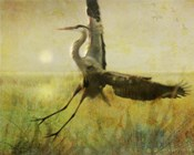 Foggy Heron II