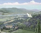 Lavender Tuscany II