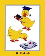 Ducks - Reading