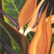 Bird Of Paradise Tile I