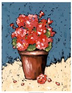 Bright Geraniums